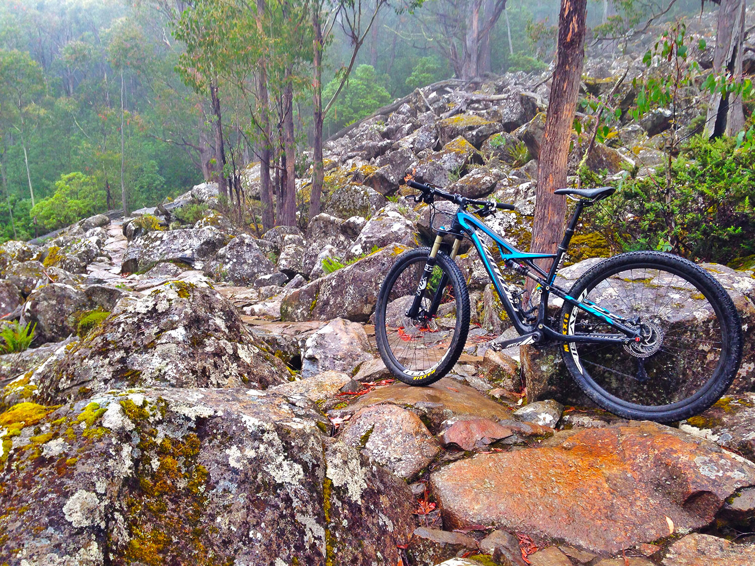 Derby Tasmania mountain bike trails